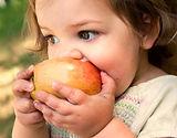 Delmar Pediatrics PLLC Homepage