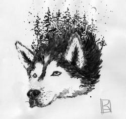 husky inktober 19