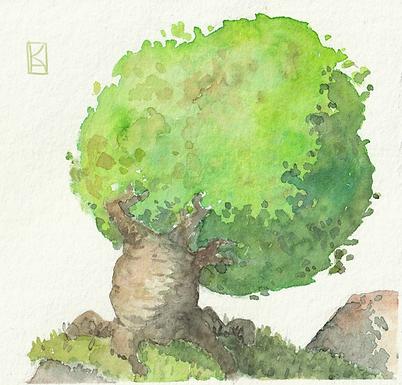 Team Trees 4