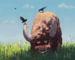 Bull+Birds color
