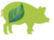 Eco_Feed_Piglet.png