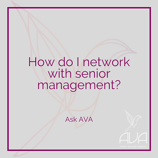 How Do I Network With Senior Management?