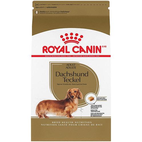 ROYAL CANIN- Teckel