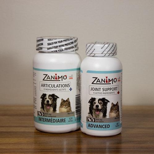 ZANIMO- Articulations intermédiaire