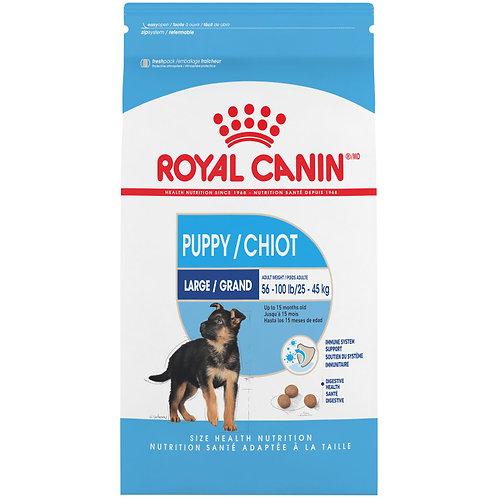 ROYAL CANIN- Chiot/ Grand