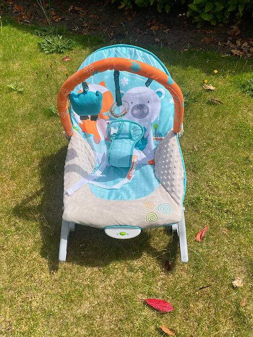 Vibrating baby bouncer (needs batteries) all working fab con