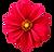 flower-png-dahlia-flower-png-transparent