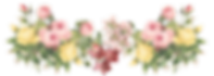 flowers-png-01-1170x416.png