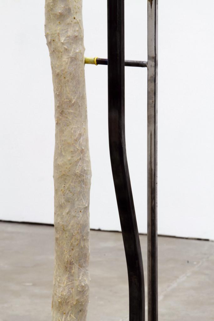 Spine (detail)