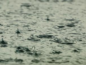 神戸実証実験、悪天候にて順延。