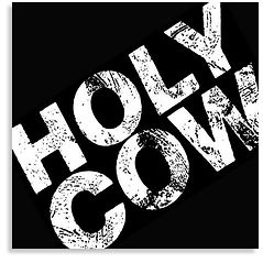 Holy Cow Shadow 480.jpg