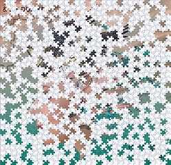 071720 Jigsaw.jpg