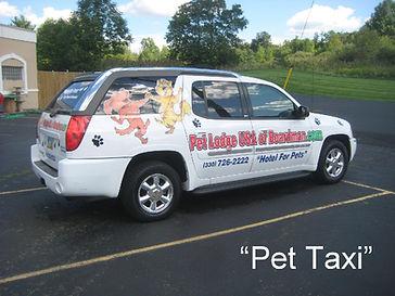 pet_taxi.jpg