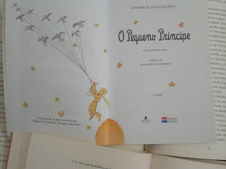 Resenha - Pequeno Príncipe, Antoine de Saint-Exupéry