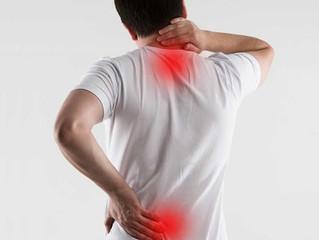 ¿Tienes dolor de espalda? La Acupuntura puede ayudarte