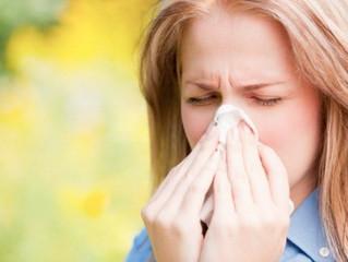 Tratamiento en Otoño para la prevención de las alergias