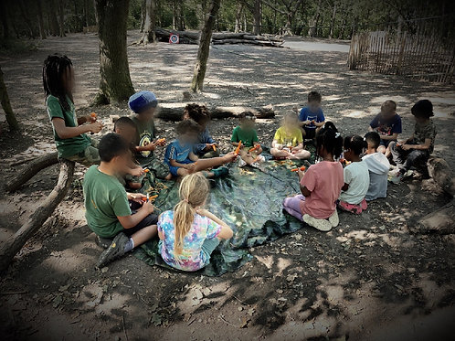 Home Education Forest School Program
