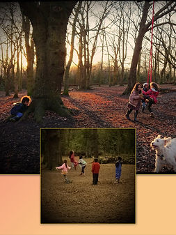 families engaged in child led play in the woods