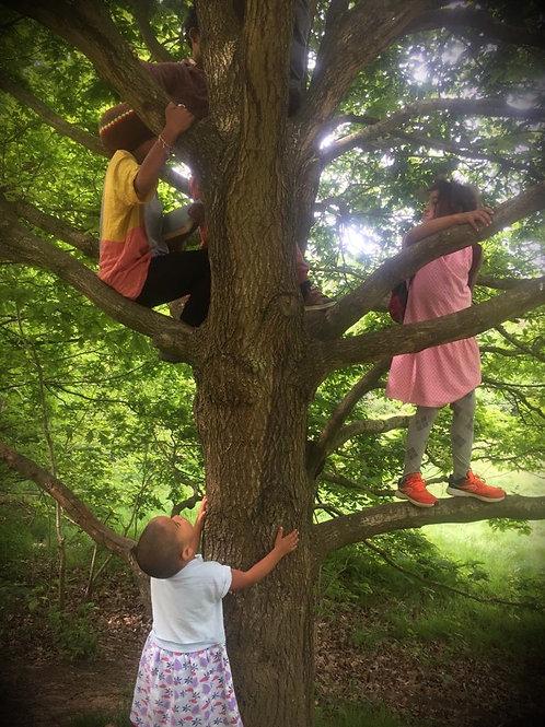 Forest School Friday Program