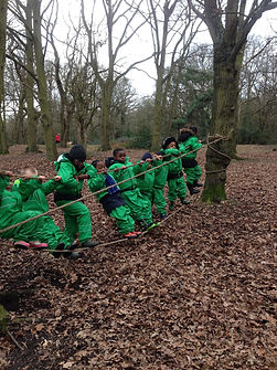 School children on a balancing rope in the woods. Physical skills and team work.