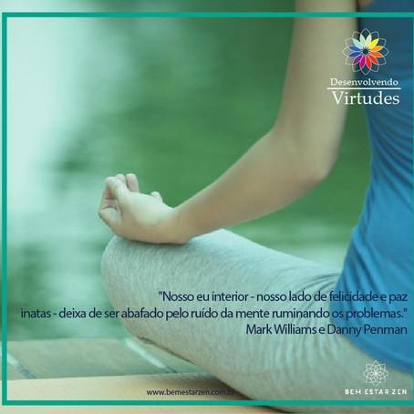 Já experimentou meditar?