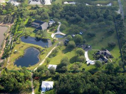 paradise aerial