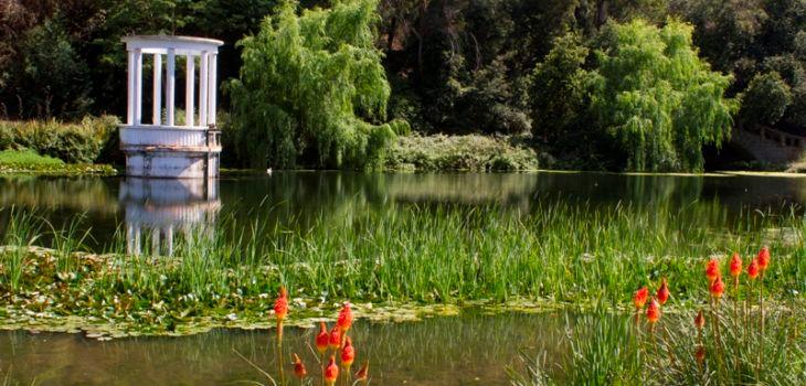 jardin-botanico-via-730x350.jpg