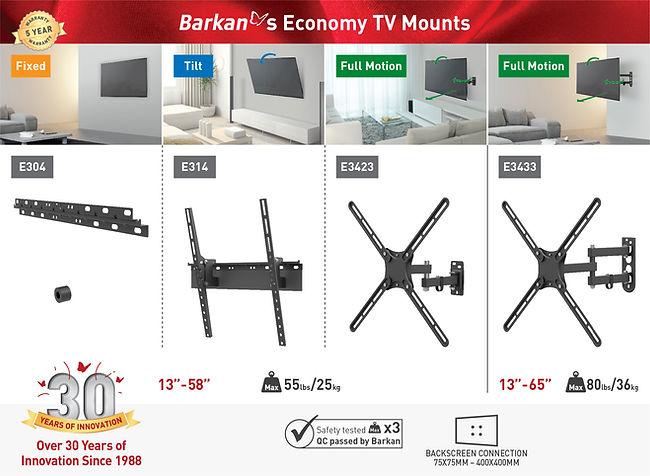 Newsletter-Economy-TV Mounts-2009.jpg