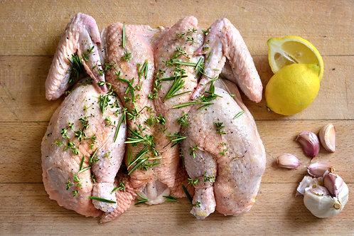 Lemon Oregano Butterflied Chicken