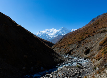 Day 14 - Trek to Thorung High Camp (4800m) - 4hrs