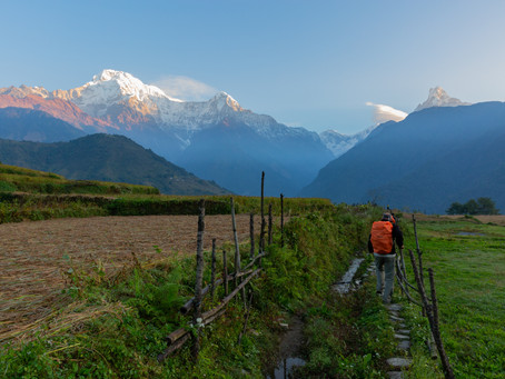 Day 22 - Drive to Pokhara (830m) - 3hrs