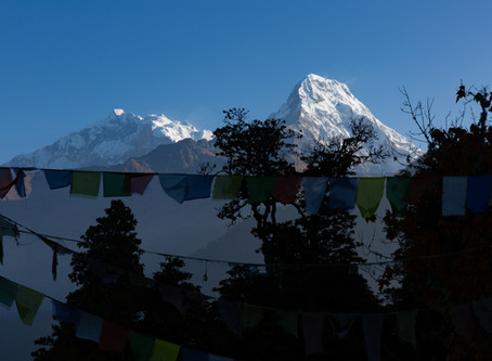 Day 21 - Trek to Ghandruk (1940m) (A village with the original Gurung culture) - 7.5hrs