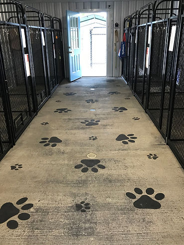 KENNEL FLOORS.jpg