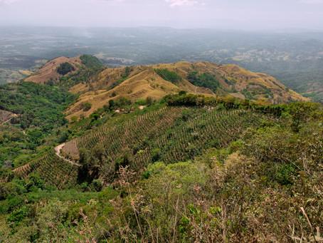 Cerro Tinajitas: a spectacular view at the Golf of Nicoya