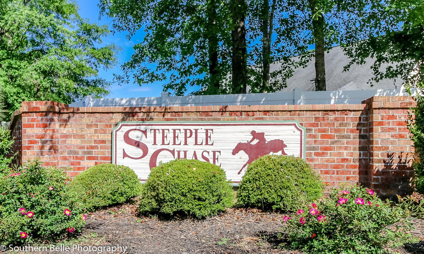 1. Steeple Chase Entrance WM