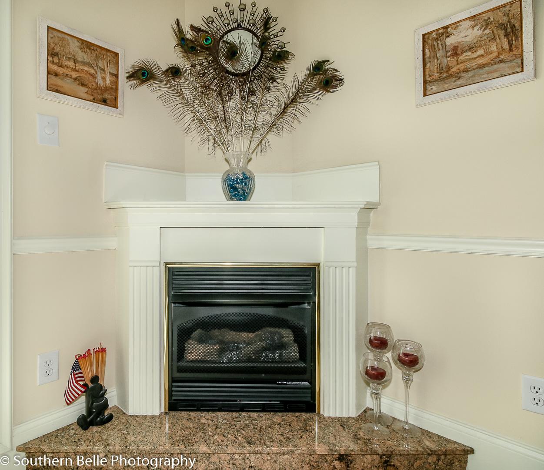 11. Living Room Fireplace WM