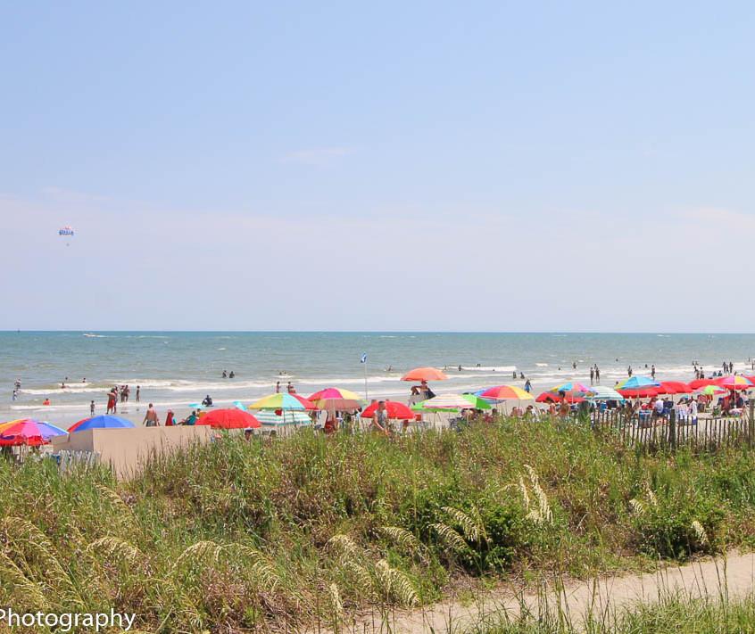 16. Beach View WM
