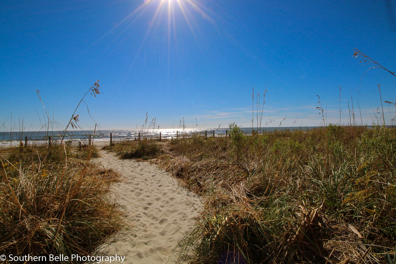 35. Beach Access WM