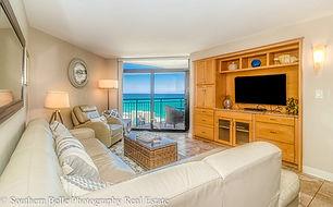 9. Living Room View LHDR WM.jpg