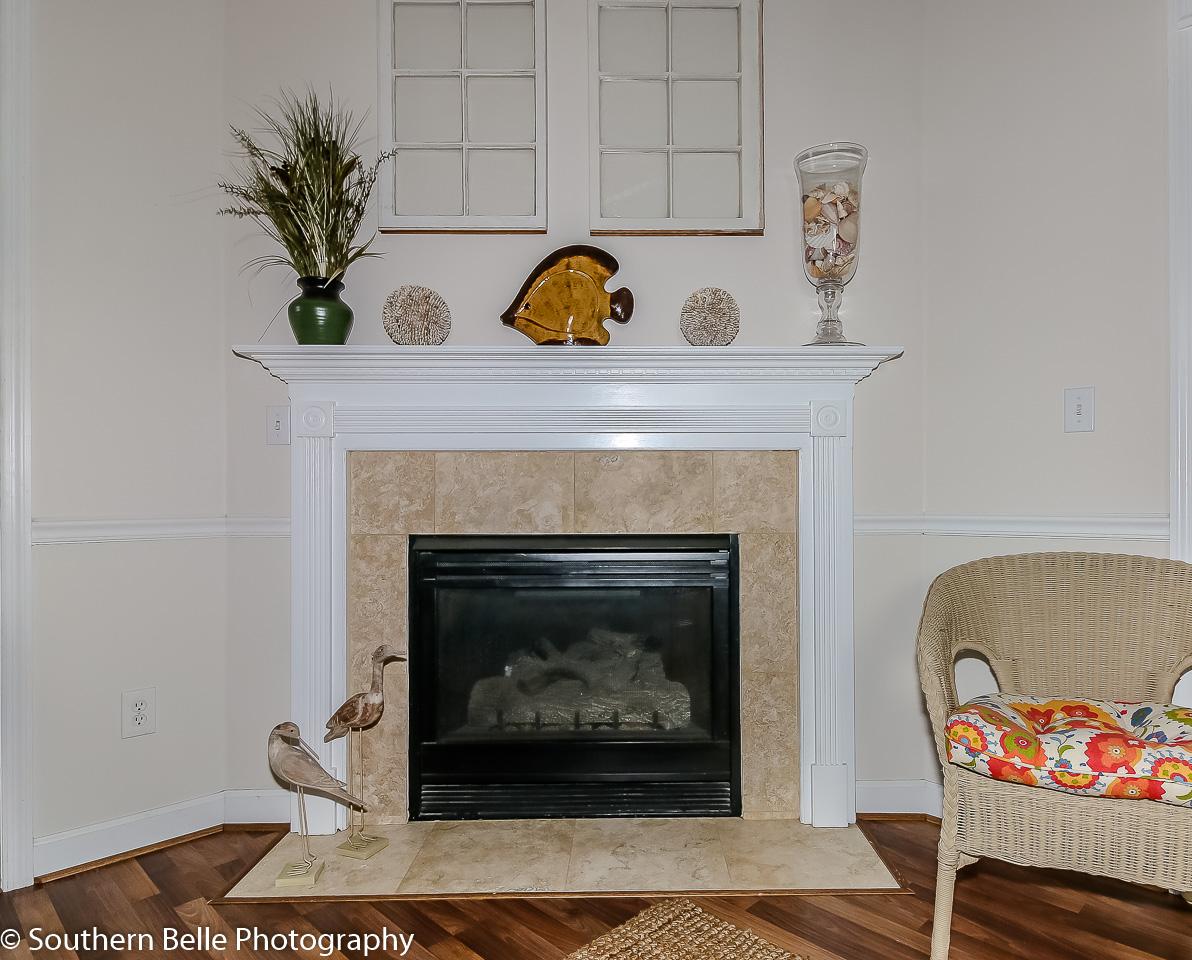 14. Fireplace WM