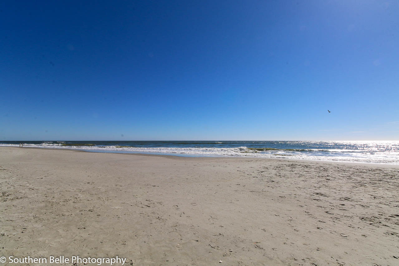 36. Beach WM