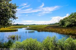 27.Marsh View WM