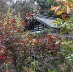 箱根 奥湯元旅館