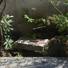 文京区K邸