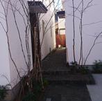 西東京S邸