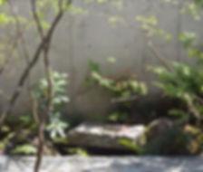 雑木の庭 神奈川 庭相