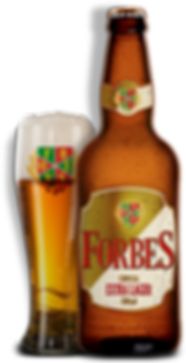 FORBES-500-EXTRA-COPO.png
