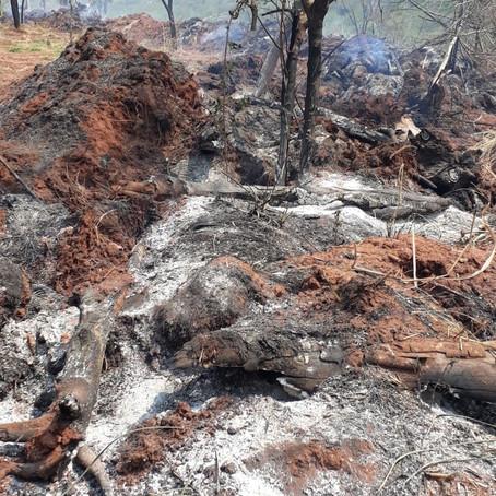 Prefeitura de Cianorte apagou incêndio no Mandhuy primeiro no seu site!
