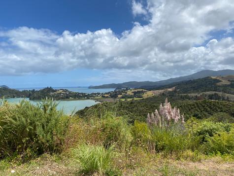 Reisverhaal Nieuw-Zeeland deel 3
