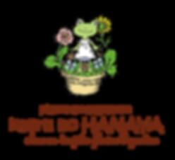 神奈川県のギャザリング寄せ植え教室|kaeru no HANAYA|kaeru no HANAYA